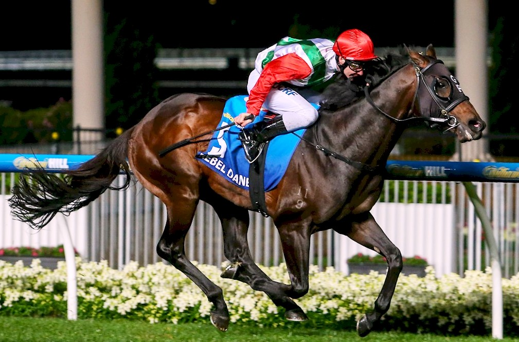Rebel Dane ridden by Ben Melham wins William Hill Manikato Stakes at Moonee Valley Racecourse on October 21, 2016 in Moonee Ponds, Australia. (Pat Scala/Racing Photos)