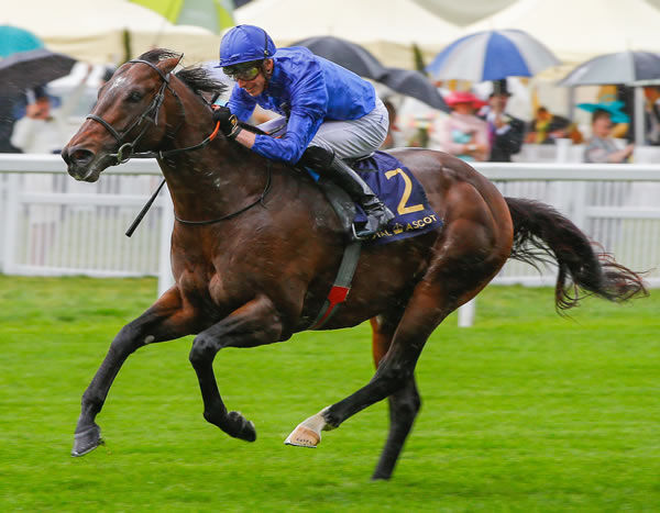 Blue Point (IRE)